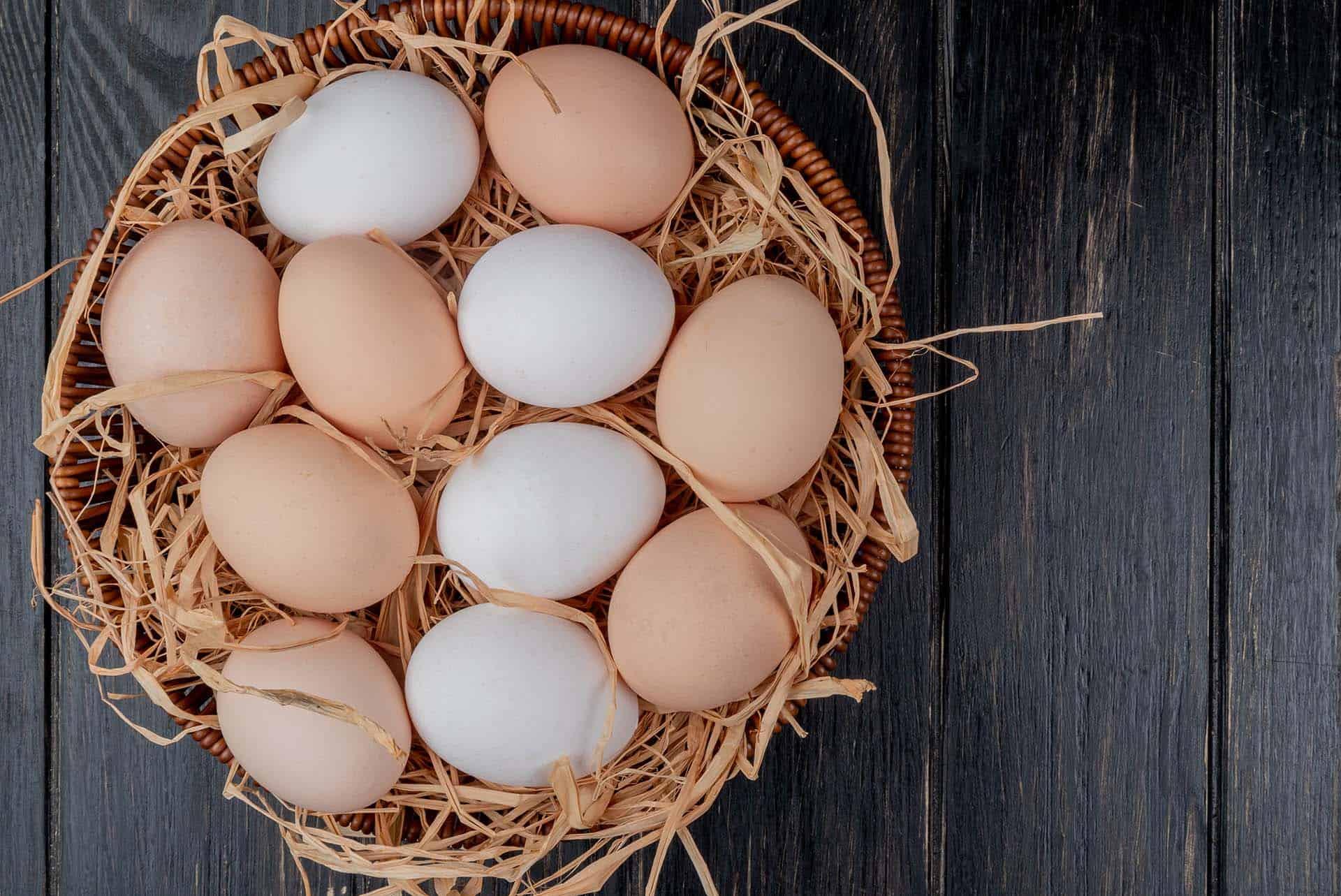 Kahverengi Ve Beyaz Yumurtanın Farkları