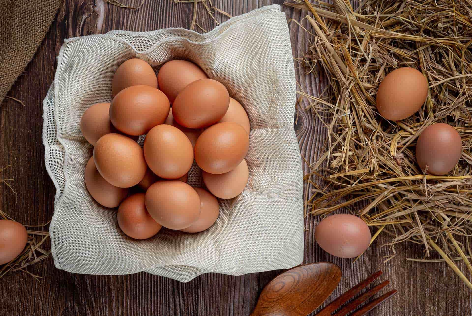 Organik Yumurtayı Anlamanın 6 Püf Noktası