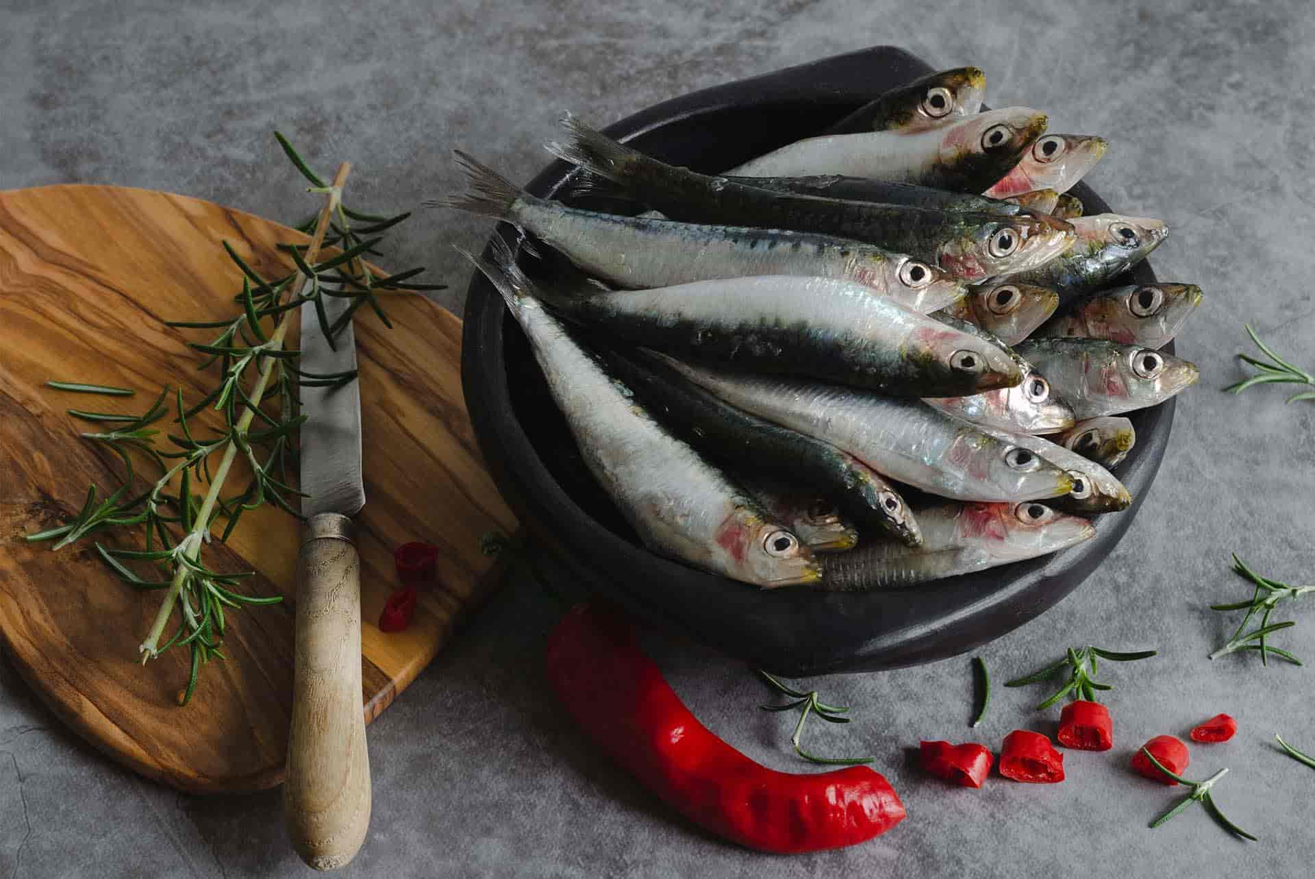 Kendi Küçük, Faydaları Büyük Bir Balık: Sardalye
